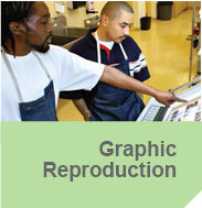 Graphic Reproduction