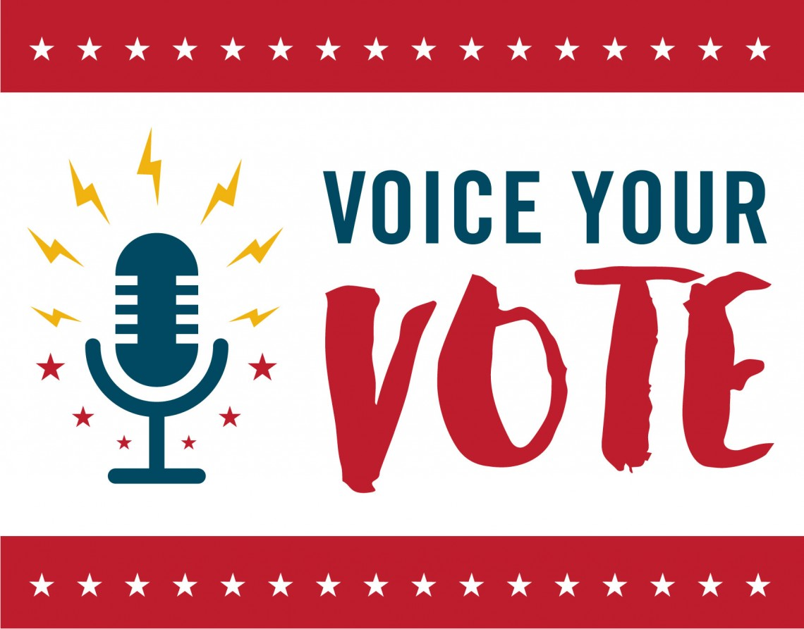 sdce voice your vote