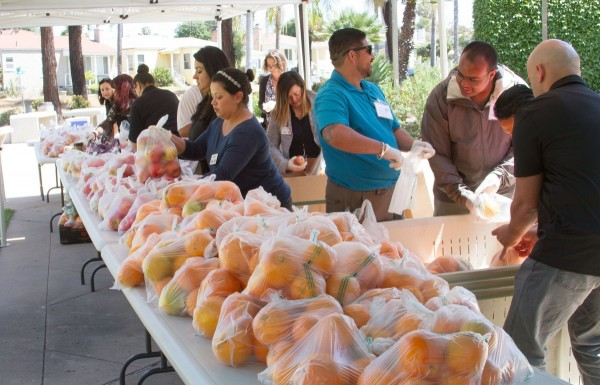 San Diego Continuing Education Outreach Ambassadors Prepare for SDCE's Farm to Family Fair